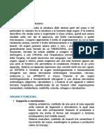 Appunti di Anatomia Umana.pdf
