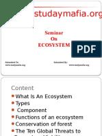 ecosys.pptx