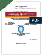 323602482 Gunjan Aggarwal Report on Credit Appraisal Docx