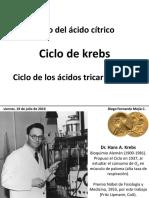 Ciclo de Krebs DFMC Jul2019