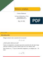 Clase 8_(Complejos).pdf