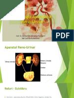 Renal_1_AV.pdf
