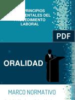 principios fundamentales procedimiento laboral