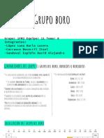 Grupo Boro