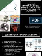 Clase 5 Los Leucocitos y Sus Funciones 2019 II Final