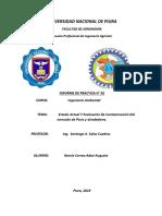 informe ambiental n°02 aaaa.docx