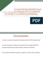 Utilización de Sustratos Energéticos en El Músculo Esquelético