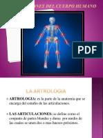 211985631-Articulaciones-Del-Cuerpo-Humano (1).pptx