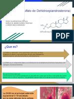 DHEA-S (Sulfato de Dehidroepiandrosterona)