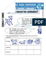 Ficha de Como Nacen Los Animales Para Segundo de Primaria