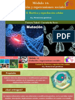 AI4. Mutaciones genéticas/Módulo 16