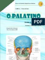 01 - Palatino