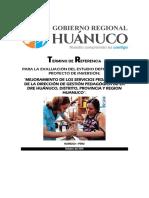 Tdr Evaluacion Est. Def Desnutri Chavinillo