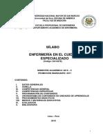 Silabo Cuidado Especializado 2019 PDF