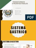Sistema Gastrico