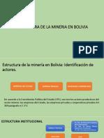 Estructura Institucional Der. Minero
