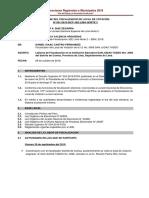 Modelo Informe Final Flv_erm 2018-2