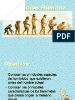 3.-+Hominidos+2014.ppt.pps