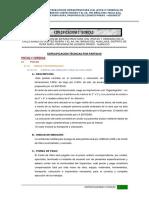 ET Brisas del HuallagaFinal.docx