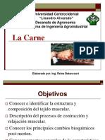 Clase I. Bioquimica de La Carne