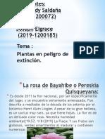 Biologia 1 Planta en Extincion