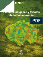 Pan Amazonia 2019