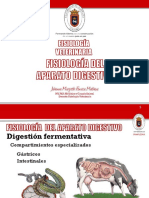5° Clase Fisiología digestiva