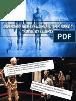 Exposicion Anatomia Final