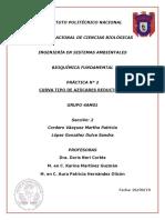 P2.-BIOCA.1.docx
