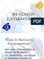 Business Environment 1