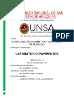 CARATULA MEJORADA INFORMES.docx