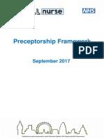 CapitalNurse Preceptorship Framework