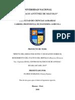 5. PLAN DE TESIS  4. marco teorico.docx