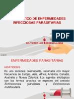 17. DX. ENF. PARASITARIAS.pptx