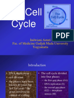 03. Cell Cycle & Apoptosis