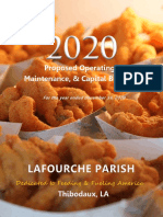 Lafourche 2020 Proposed Budget
