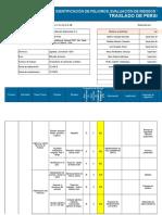 IPER-SSOMA-001Transporte de personal_Ver. 06.xlsx