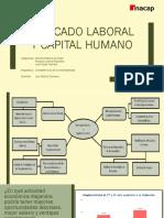 MERCADO LABORAL Y CAPITAL HUMANO.pptx