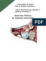roteiro_exercicio_morfo_i.pdf