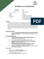 Plan de Enfoque Ambiental Marcelino 2