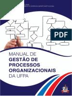 Manual de Gestao Ufpa