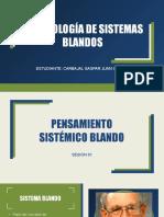 Metodología de Sistemas Blandos-resumen