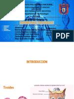 Seminario 4. Hormonas tiroideas..pptx