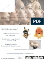 Analisis de Perfil Facial