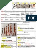 Evolution Chart