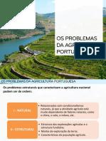 Problemas Da Agricultura Portuguesa