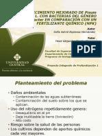 Presentacion PIP