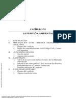 Principios e instituciones de derecho ambiental cap vii