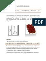 369030248-Carbonato-de-Calcio.docx
