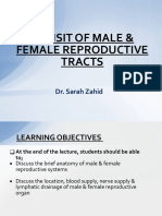 20190126 Revisit of Male & Female Genital Tracts Semester VII